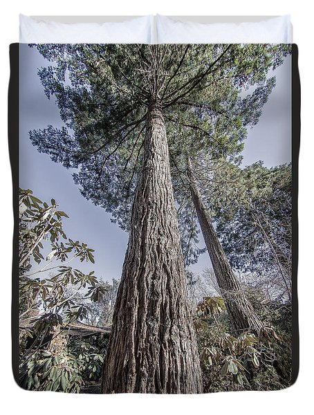 Giant Redwood - Standing Tall Duvet Cover