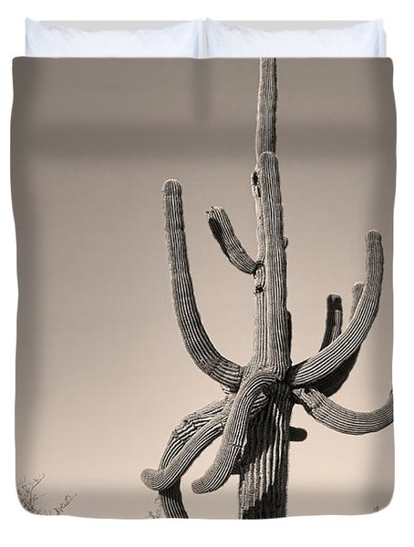 Giant Saguaro Cactus Sepia Image Duvet Cover by James BO  Insogna