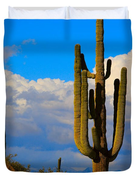 Giant Saguaro In The Southwest Desert  Duvet Cover by James BO  Insogna