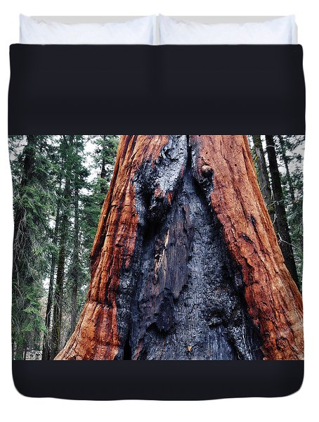 Duvet Cover featuring the photograph Giant Sequoia by Kyle Hanson