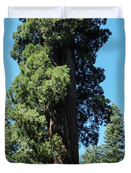 Giant Sequoia, Sequoia Np, Ca Duvet Cover