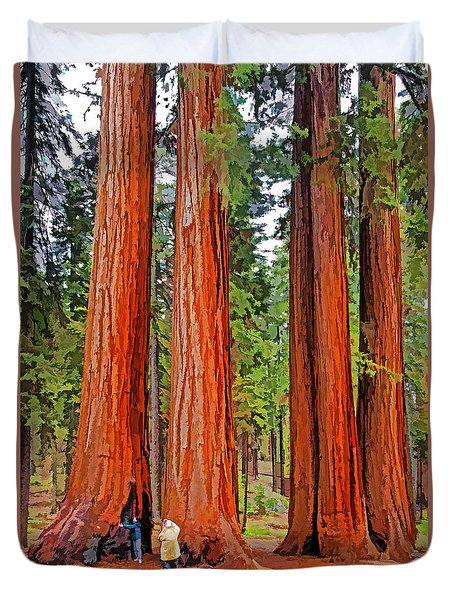 Giant Sequoias Duvet Cover by Dennis Cox