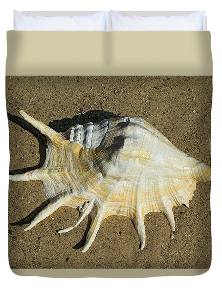 Duvet Cover featuring the photograph Giant Spider Conch Lambis Truncata by Frank Wilson