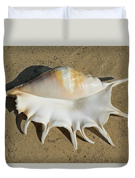 Duvet Cover featuring the photograph Giant Spider Conch Seashell Lambis Truncata Seashell  by Frank Wilson