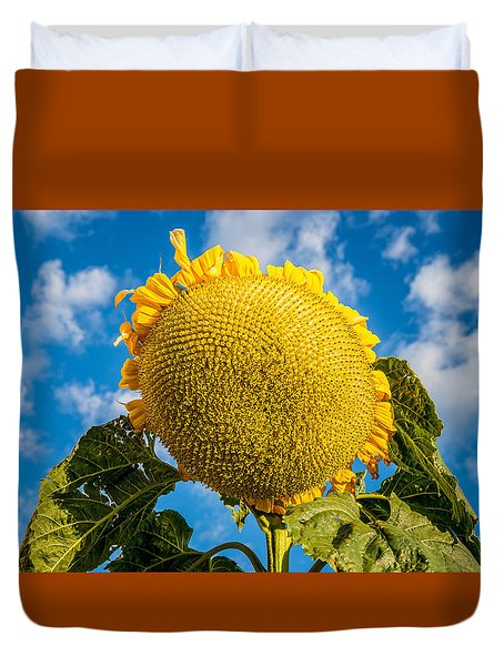 Giant Sunflower Against A Blue Sky With Clouds. Duvet Cover