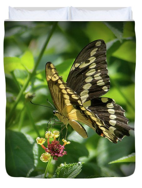 Giant Swallowtail On Lantana Duvet Cover