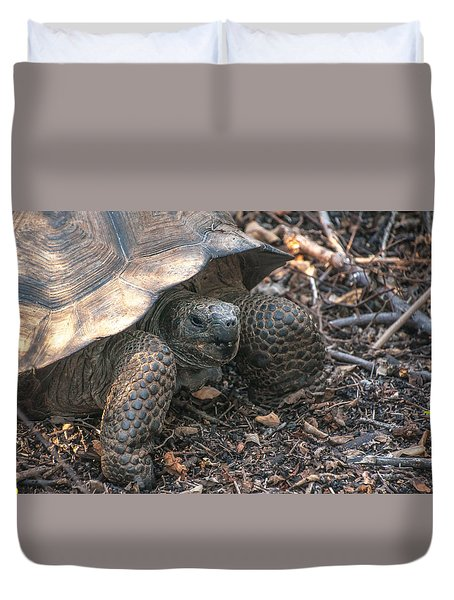 Giant Tortoise At Urbina Bay On Isabela Island  Galapagos Islands Duvet Cover
