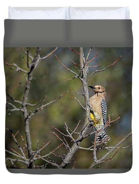 Gila Woodpecker Duvet Cover