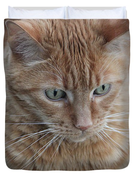 Ginger Cat Duvet Cover