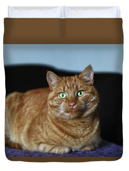 Duvet Cover featuring the photograph Ginger Marmalade Cat by Nareeta Martin