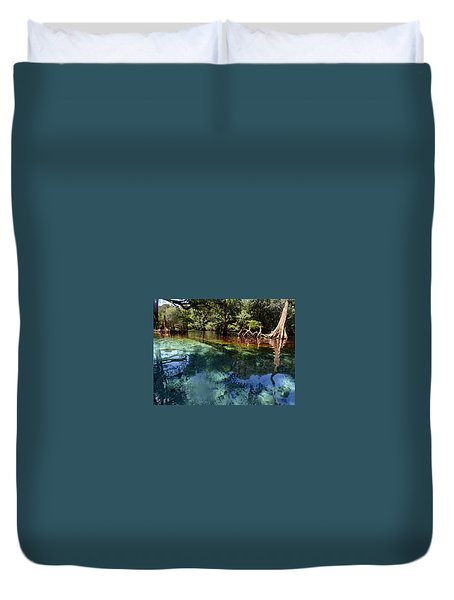 Duvet Cover featuring the photograph Ginnie Springs by Farol Tomson
