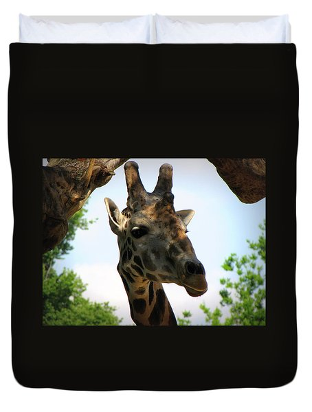 Duvet Cover featuring the photograph Giraffe by Beth Vincent