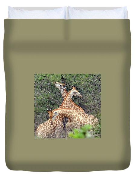 Giraffe Flirting Duvet Cover