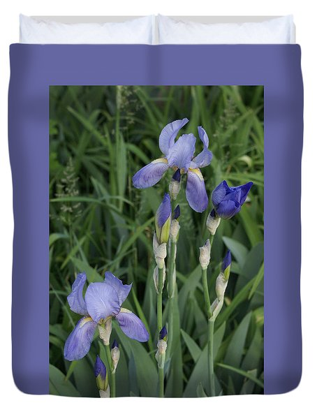 Glads Duvet Cover by Cynthia Powell