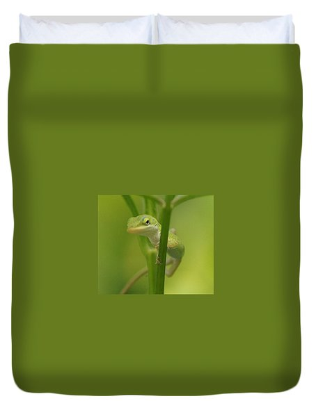 Glaring Lizard Duvet Cover by Paul  Wilford