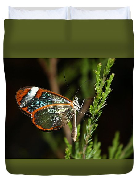 Duvet Cover featuring the photograph Glasswinged Butterfly by Living Color Photography Lorraine Lynch
