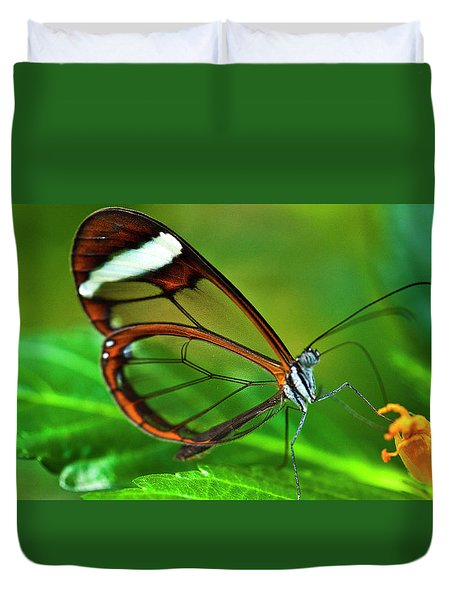 Duvet Cover featuring the photograph Glasswinged Butterfly by Ralph A Ledergerber