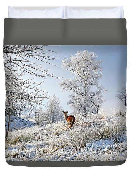 Duvet Cover featuring the photograph Glen Shiel Misty Winter Deer by Grant Glendinning