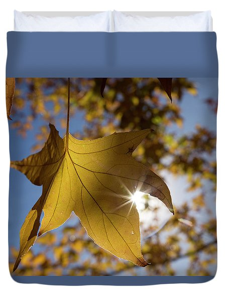 Glimmers Of Autumn Duvet Cover by Sue Cullumber