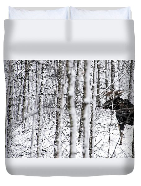 Glimpse Of Bull Moose Duvet Cover