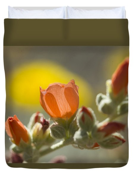 Globe Mallow Glow Duvet Cover by Sue Cullumber