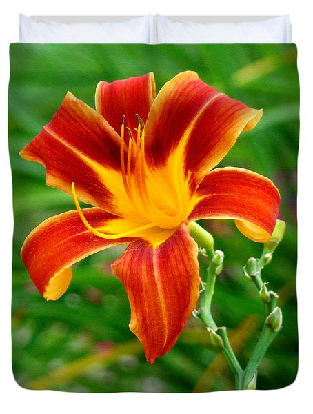 Glorious Daylily Duvet Cover