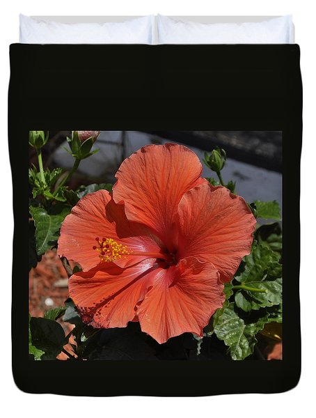Glorious Hibiscus Duvet Cover