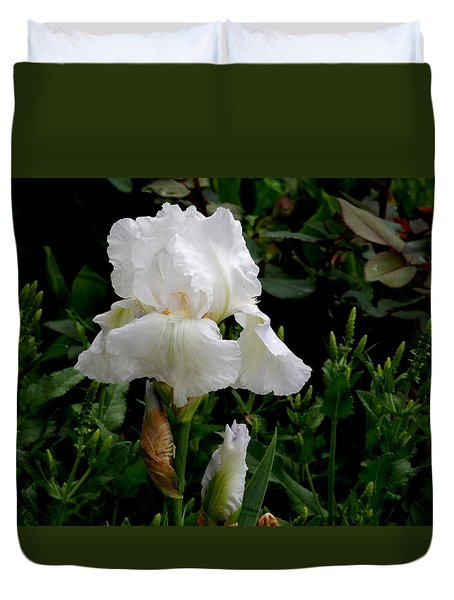 Duvet Cover featuring the photograph Glorious White by Betty-Anne McDonald