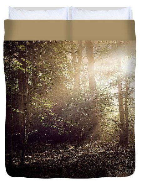 Glory Comin Down Duvet Cover by Brenda Bostic