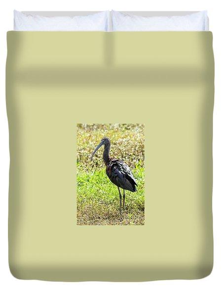 Glossy Ibis Duvet Cover