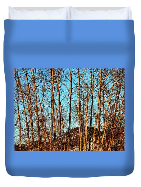 Glow Of The Setting Sun Duvet Cover by Will Borden