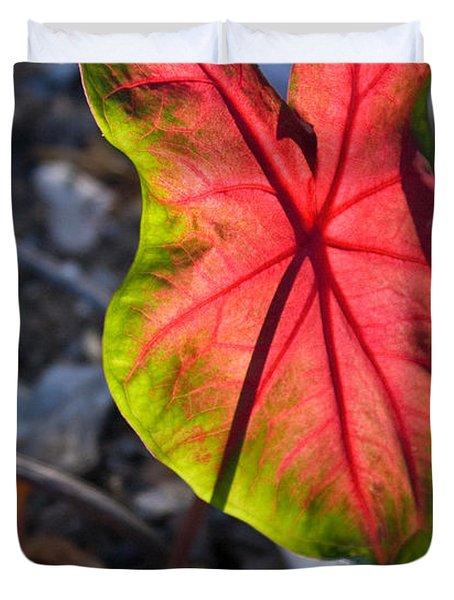Glowing Coladium Leaf Duvet Cover