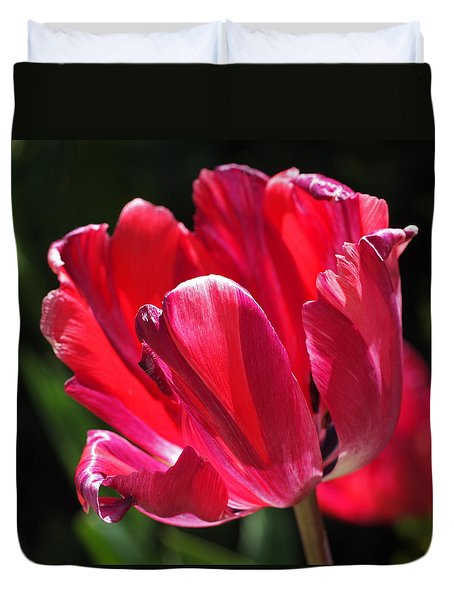 Glowing Red Tulip Duvet Cover by Rona Black