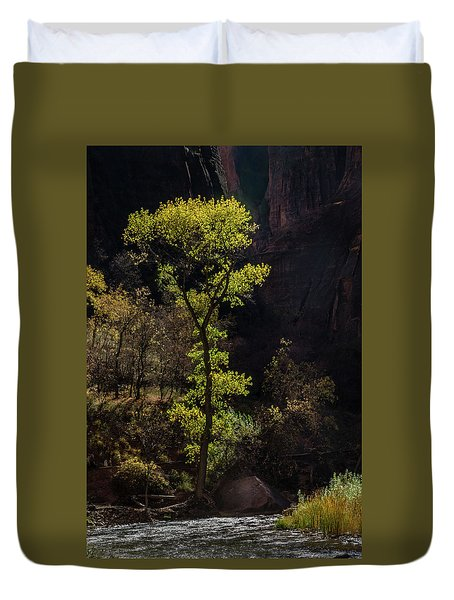 Glowing Tree At Zion Duvet Cover