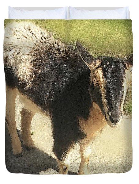 Goat Duvet Cover by Heather Applegate