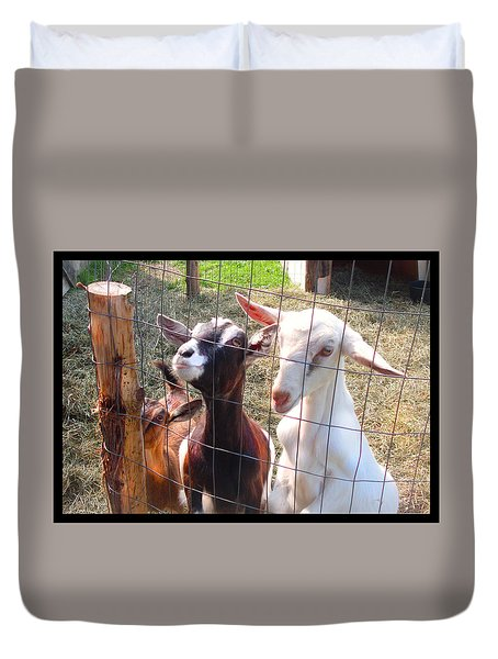 Duvet Cover featuring the photograph Goats by Felipe Adan Lerma