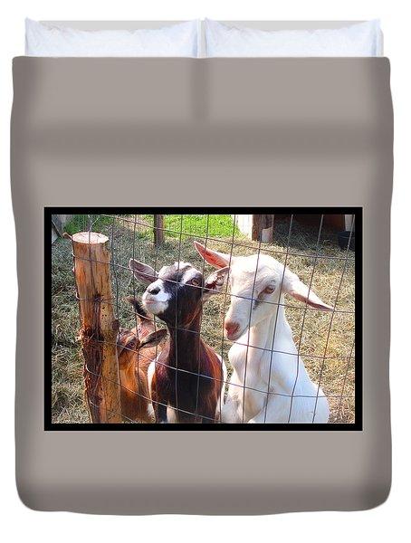 Goats Duvet Cover by Felipe Adan Lerma