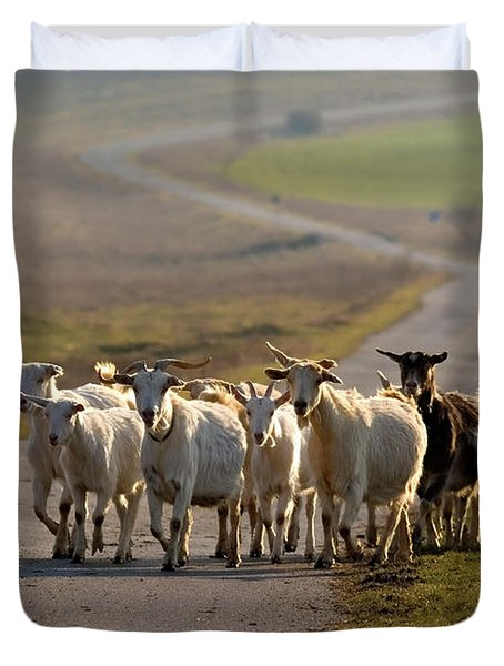 Goats Walking Home Duvet Cover