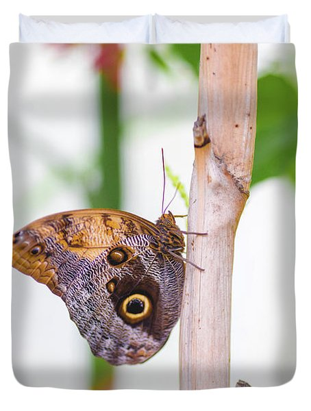 Gold And Brown Butterfly Duvet Cover