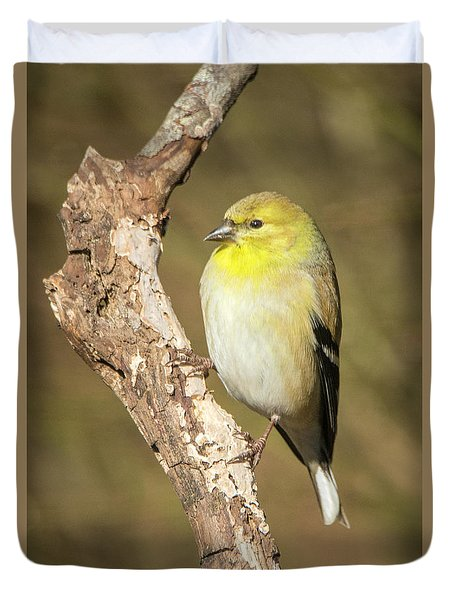 Duvet Cover featuring the photograph Gold Finch by David Waldrop
