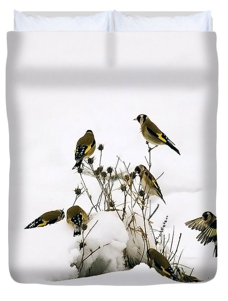 Gold Finches In Snow Duvet Cover