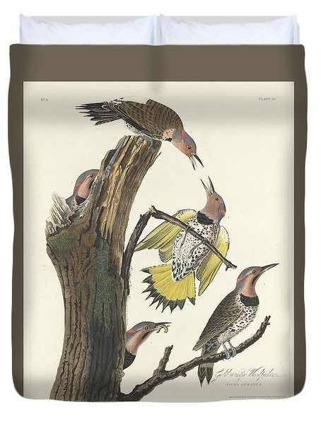Gold-winged Woodpecker Duvet Cover by Rob Dreyer