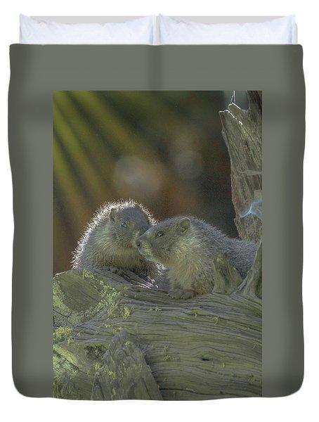 Golden Bellied Marmot Duvet Cover