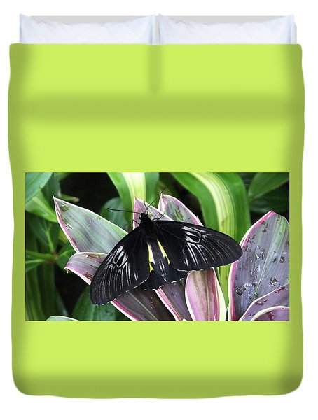 Golden Birdwing Duvet Cover