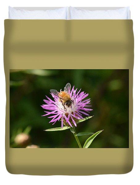 Golden Boy-bee At Work Duvet Cover by David Porteus