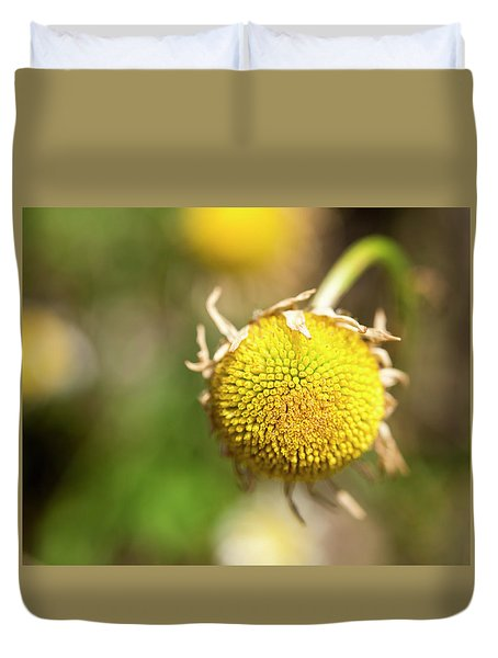 Golden Burst Duvet Cover