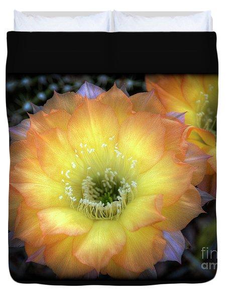 Golden Cactus Bloom Duvet Cover by Saija  Lehtonen
