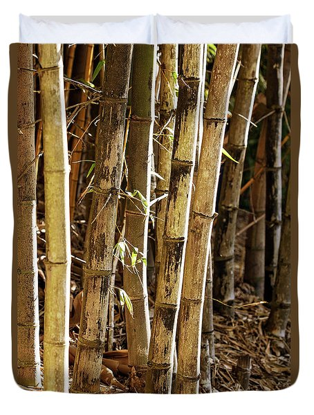 Duvet Cover featuring the photograph Golden Canes by Linda Lees