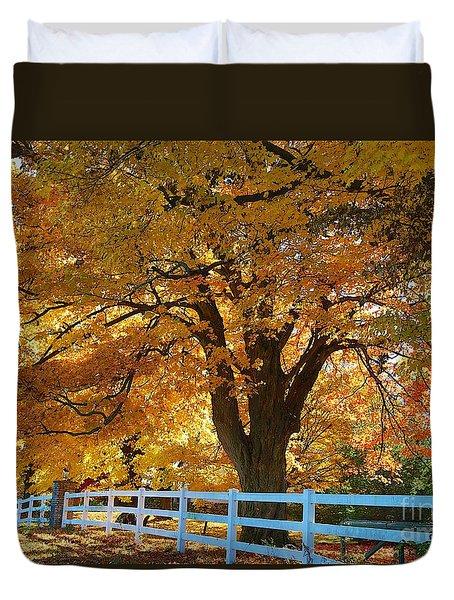 Golden Curtain Duvet Cover