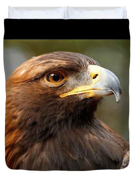 Duvet Cover featuring the photograph Golden Eagle - Posing For The Camera by Sue Harper